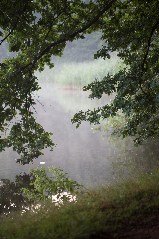 perl river